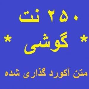 250 نت فارسی - گوشی